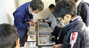 遺跡の出土遺物を仕分ける生徒
