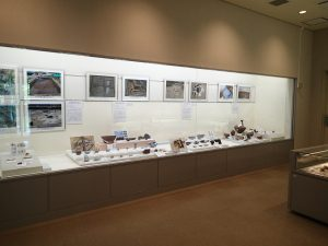 展示室内の風景