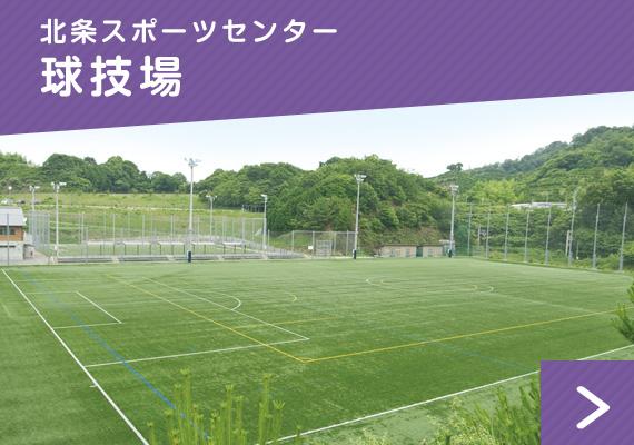 北条スポーツセンター:球技場