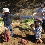 秋の大収穫祭『サツマイモを掘ろう!』